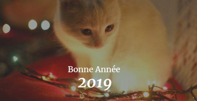 nouvel an du chat 2019