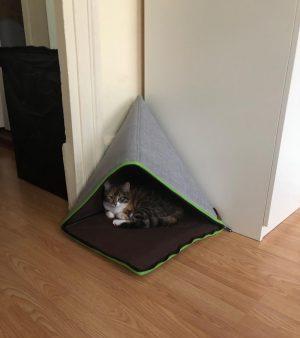 panier pour chat pliable